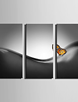 E-HOME Stretched Canvas Art Butterfly And Woman Decoration Painting Set Of 3