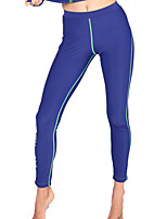 Couple Diving Suit Large Size Snorkeling Suit Plus Fat Sunscreen Long Sleeve Zipper Jellyfish Clothes