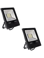 2pcs 30W 60LEDs Outdoor LED Flood Lights IP65 Warm/Cool White SMD5730 2500LM Floodlight Landscape Wall Lights DC12-24V