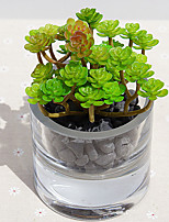1 Branch  Simulation Succulent Plants Artificial Flowers