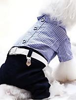 Hund Overall Hundekleidung Lässig/Alltäglich Streifen