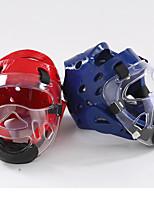 Molding Head (Plus Mask) Karate Helmet Face Mask Helmet