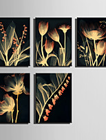 E-HOME® Stretched Canvas Art Transparent Flower Series Decoration Painting MINI SIZE One Pcs