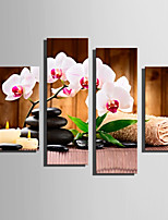 E-HOME Stretched Canvas Art Orchid And Stone Decoration Painting Set Of 4