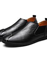 Для мужчин Мокасины и Свитер Удобная обувь Кожа Весна Повседневные Черный Темно-русый На плоской подошве