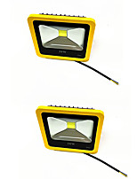 2pcs 20W Yellow Color LED Outdoor FloodLight IP65 3000K/6000K Waterproof LED Spotlight For Garage Garden AC85-265V