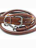 Collar Leash Wateproof Portable Adjustable Safety Solid PU Leather