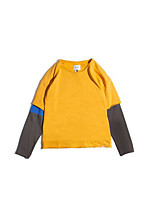 Men's Casual/Daily Sweatshirt Color Block Round Neck Micro-elastic Others Long Sleeve Spring Fall