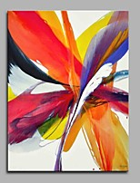 Colourful Feathers 100% Hand Painted Contemporary Oil Paintings Modern Artwork Wall Art for Room Decoration