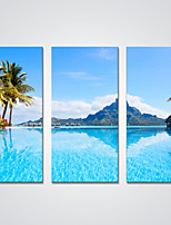 Impresiones en Lienzo Estirado Tres Paneles Lienzos Horizontal Estampado Decoración de pared For Decoración hogareña