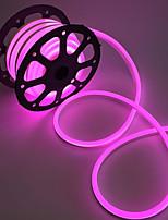 lumière LED néon 2m étanche à l'eau ip68 120leds / m chaud blanc / blanc / rouge / jaune eu plug (ac220v-240v)