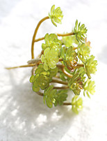 1 Branch Others Plants Tabletop Flower Artificial Flowers Fleshiness Indoor Plant Wall Immortal Tree