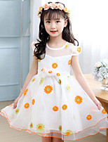 Menina de Vestido Floral Verão Poliéster Manga Longa
