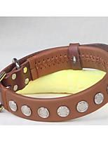 Colliers Portable Couleur Pleine