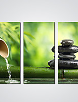 Canvas Print Zen  Picture Bamboo and Black Stone Print on Canvas for Decoration Ready to Hang