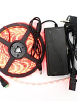 50W Light Sets 6000 lm AC 100-240 V 5 m 300 leds Warm White White Red Yellow Blue Green