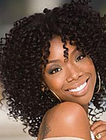14inch Kinky Curly Wigs Afro Wig Short Wigs for Black Women High Temperature Fiber Synthetic Hair