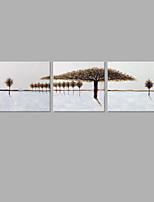 Ручная роспись Цветочные мотивы/ботанический Художественный 3 панели Холст Hang-роспись маслом For Украшение дома