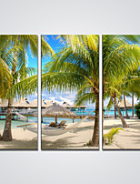 Canvas Print Sunny Beach and Trees Print Art for Wall Decoration Ready to Hang 30x60cmx3pcs
