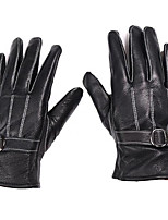 Dedos completos Tejido Oxford Guantes motocicletas