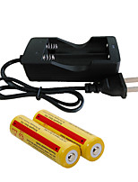 Зарядные устройства LED 2000 Люмен Режим - 2 x Батареи 18650 Перезаряжаемый для Походы/туризм/спелеология Повседневное использование