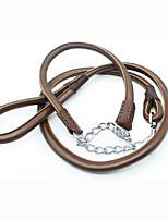 Colliers Laisses Etanche Portable Sécurité Ajustable Couleur Pleine