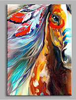 Appaloosa 100% Hand Painted Contemporary Oil Paintings Modern Artwork Wall Art for Room Decoration