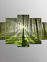 Impresiones en Lienzo Estirado Abstracto,Cinco Paneles Lienzos Horizontal Estampado Decoración de pared For Decoración hogareña