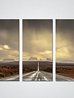 Отпечатки на холсте 3 панели Холст Горизонтальная С картинкой Декор стены For Украшение дома