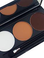 Pro 3 contours de couleurs blush blusher kit bronzer et mettant en évidence la palette de maquillage mat brillant