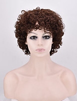 Fashion Brown Color Kinky Curly Synthetic Wigs For Afro Women Wigs