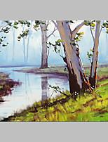 Dipinta a mano Paesaggi Artistico Stile naturalistico All'aperto Un Pannello Tela Hang-Dipinto ad olio For Decorazioni per la casa