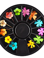 Dried Flowers Ornaments Disks Genuine Flowers Nail Decorations