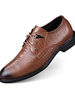Men's Shoes Real Leather Nappa Leather Cowhide Spring Fall Comfort Formal Shoes Driving Shoes Oxfords Lace-up For Casual Office & Career