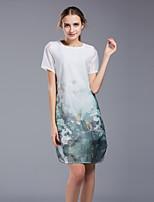 Для женщин На каждый день Большие размеры На выход Винтаж Очаровательный Шинуазери (китайский стиль) Прямое Платье Цветочный принт,