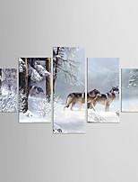 Impresiones en Lienzo Estirado Cinco Paneles Lienzos cualquier Forma Estampado Decoración de pared For Decoración hogareña