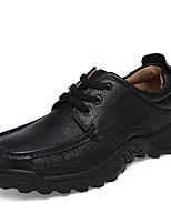 Для мужчин Туфли на шнуровке Удобная обувь Лето Осень Дерматин Кожа Повседневные Комбинация материалов На плоской подошве На низком