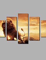 New Arrivals Canvas Painting Scenery Sunset Animals Five Panels Prints & Posters Lions Wall Art Decor For Modern House Deco