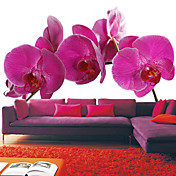 Pink Orchid Floral Nature Mural