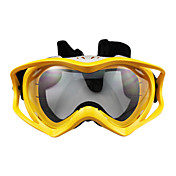 Outdoor Stylish Skiing Goggles with Transparent Lens