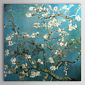 Hand-painted Almond Branches in Bloom,San Remy,c.1890 Oil Painting by Vincent Van Gogh with Stretched Frame