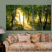 Modern Style Green Forest Wall Clock in Canvas 5pcs