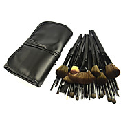 Color Shine 32 Loaded Brushes