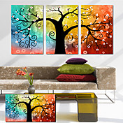 Stretched Canvas Art Botanical the Lucky Tree Set of 3