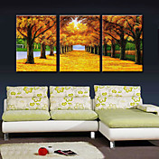 MX Hand-Painted Oil Painting Golden Road With Stretched Frame Set of 3-9154