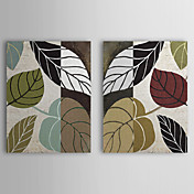 Stretched Canvas Art Botanical Leaf Story by Color Bakery Set of 2