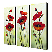 Hand Painted Oil Painting Floral Red Flower with Stretched Frame Set of 3