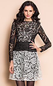 TS Black And White Low Waist Lace Dress