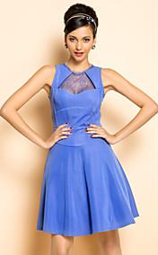 TS VINTAGE Lace Swing Dress