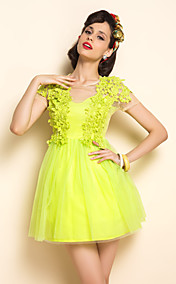 TS Simplicity Mesh Dress